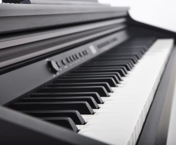 Artesia DP-3 Keyboard